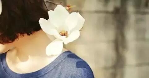 朵女郎-美丽健康与养生 朵女郎之花官网 你有异味 我有朵女郎1499830268_672787